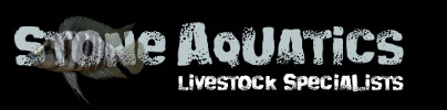 Stone Aquatics
